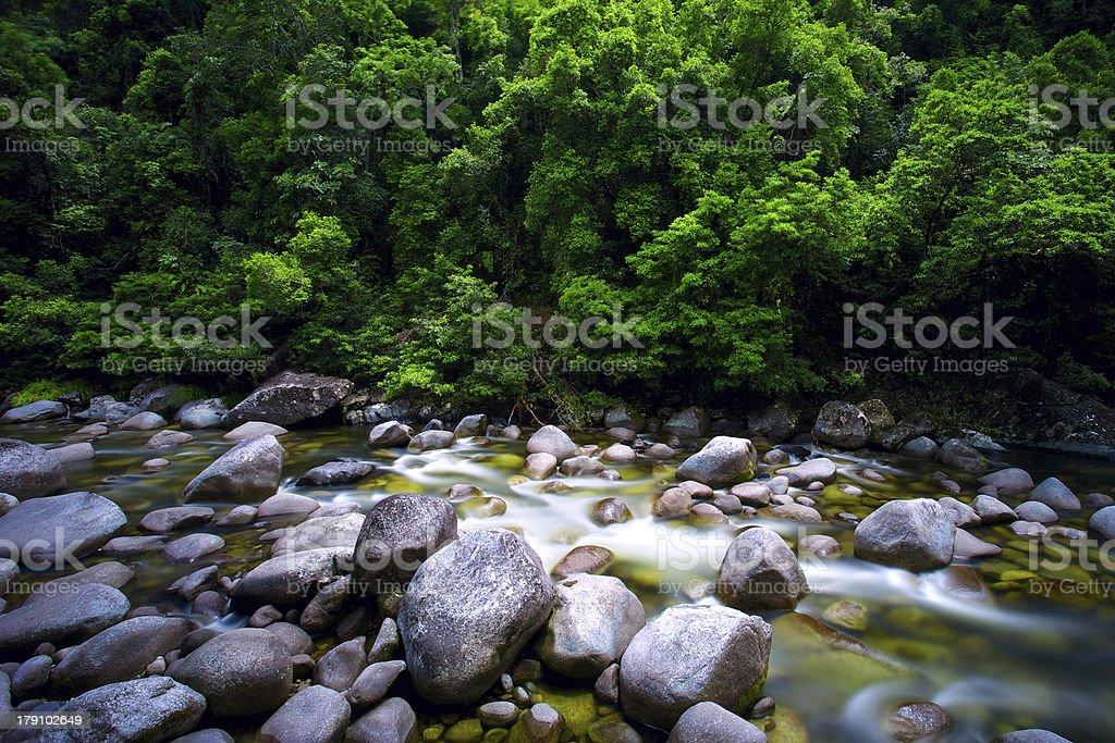 Mossman River Daintree National Park stock photo