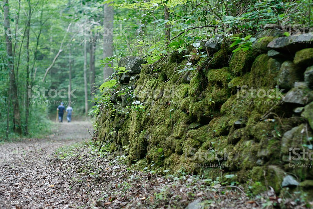 Mossy Bricks on a Smoky Mountains Hiking Trail royalty-free stock photo