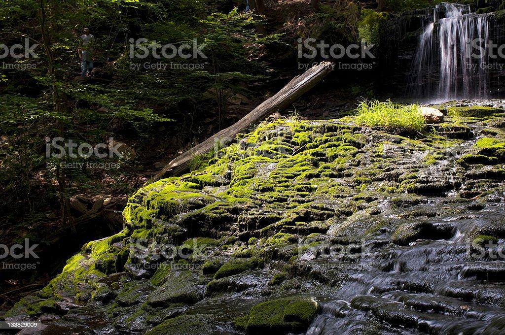 Mossy Cascade royalty-free stock photo