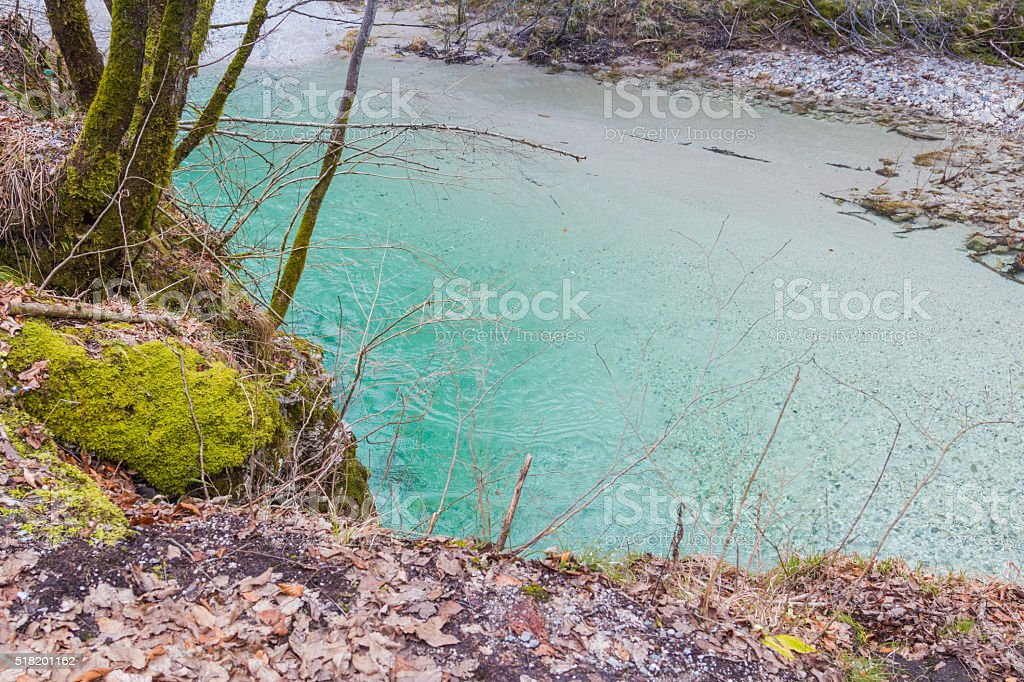 Mossy river bank. stock photo