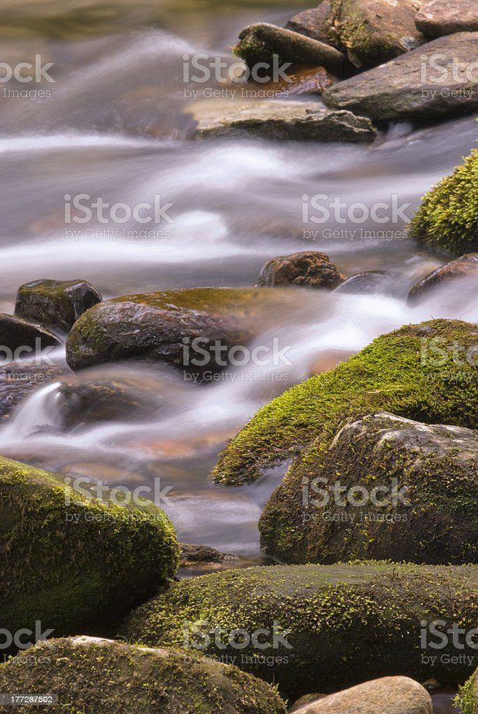 Mossy Rocks in a Stream royalty-free stock photo