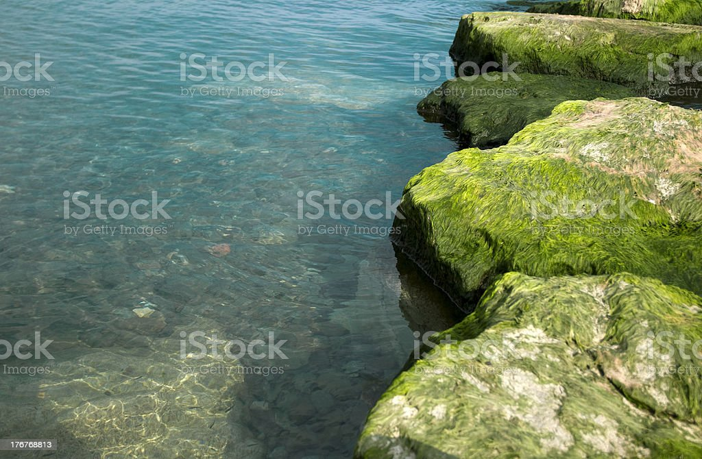 Mossy Rocks, Lakewater, Nature Background stock photo