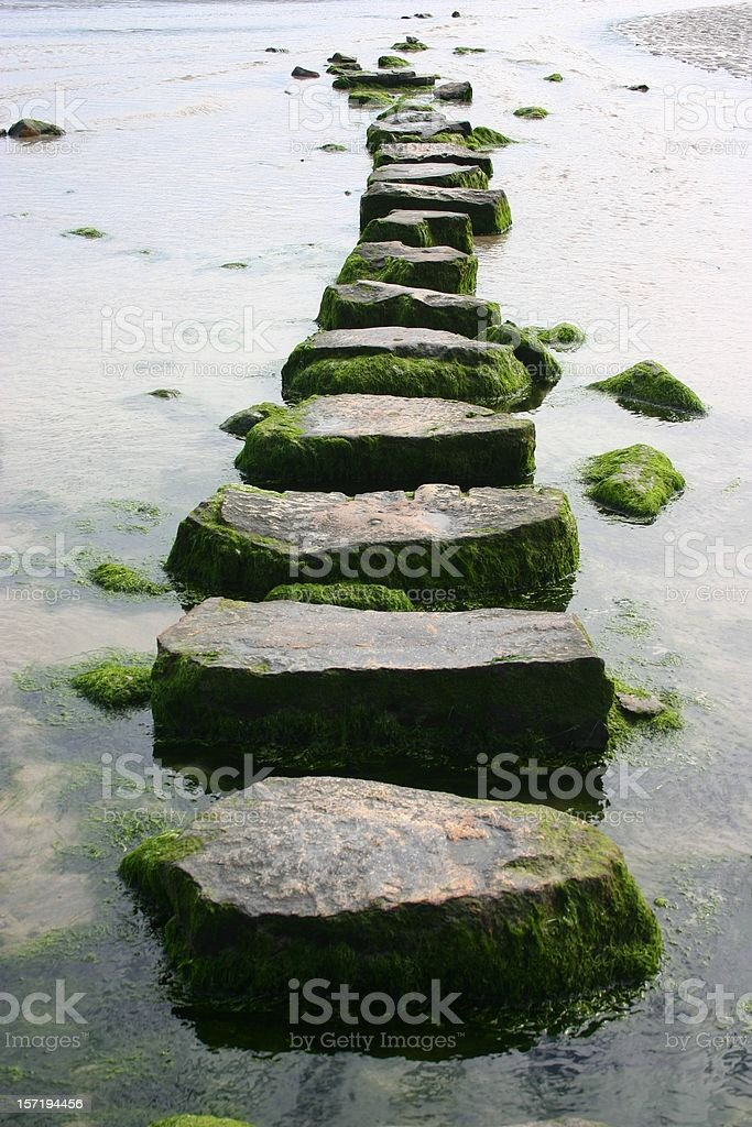 mossy stepping stones stock photo