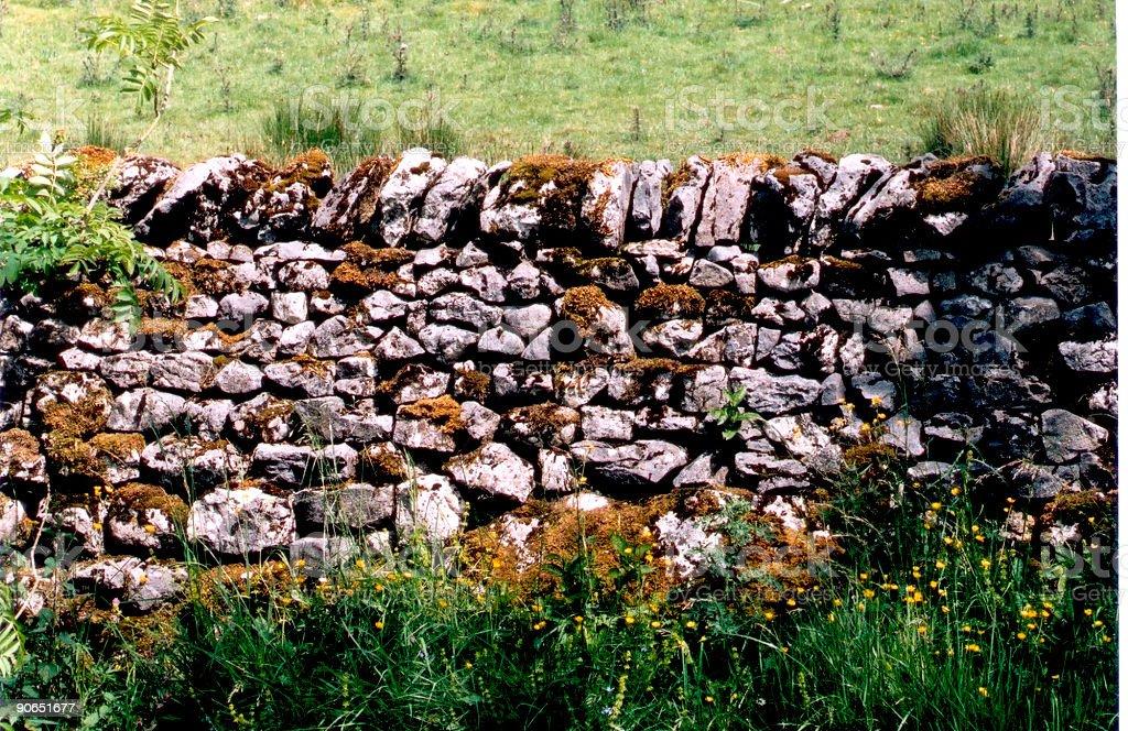 Mossy Wall stock photo