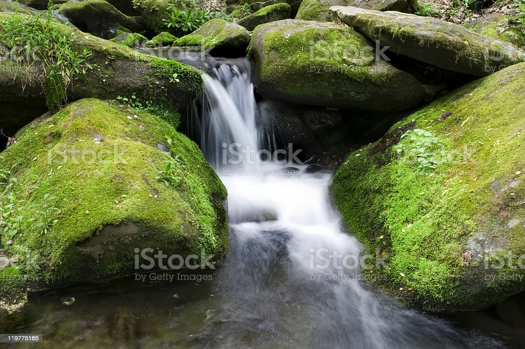 Mossy waterfall stock photo