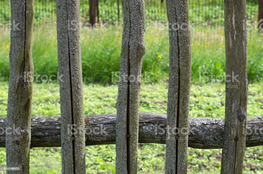 Mossy wooden fence of the five pegs in the cracks stock photo