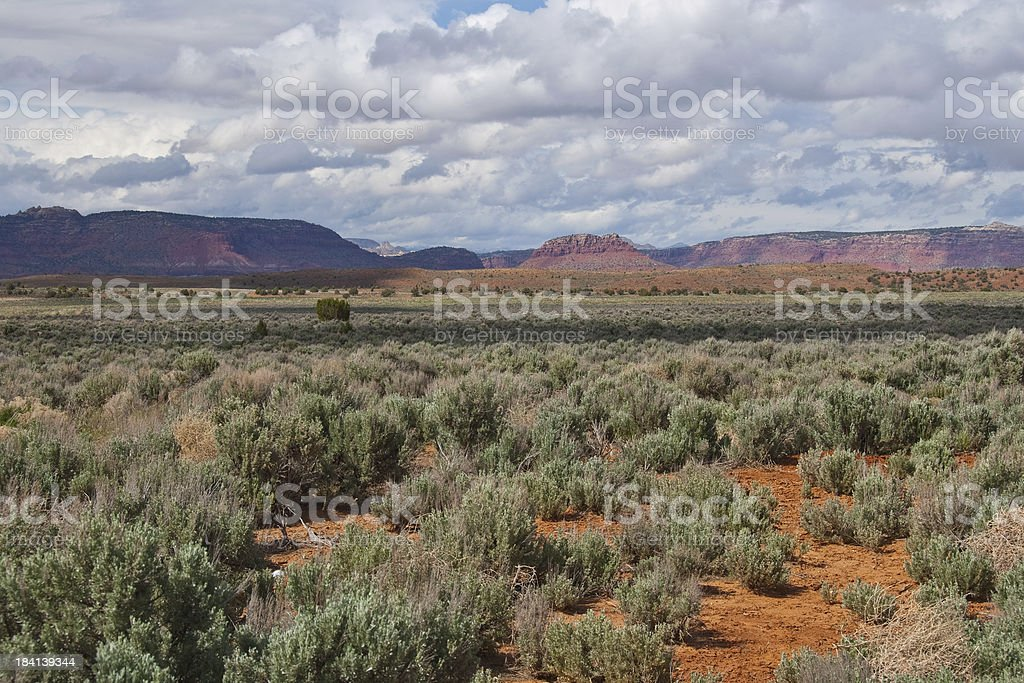 Sagebrush and Distant Mountains royalty-free stock photo