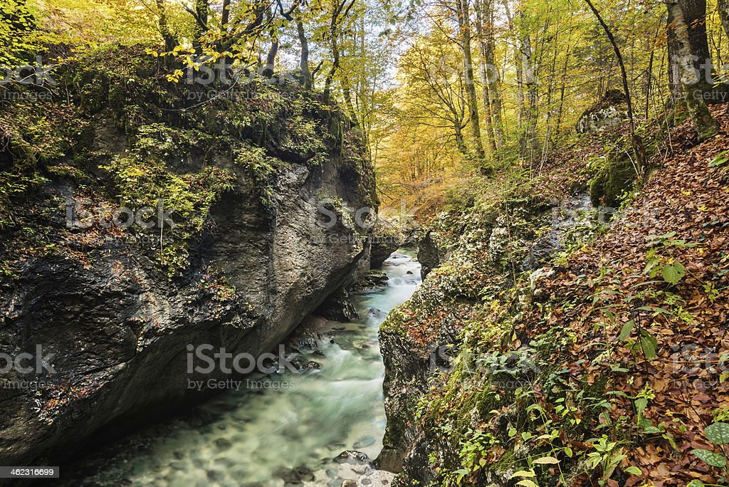 Mostnica royalty-free stock photo