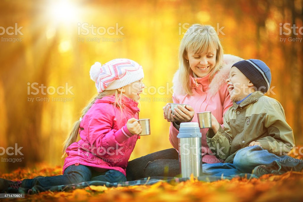 Mother and children having a picnic royalty-free stock photo