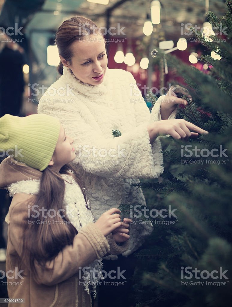 mother and daughter choose tree stock photo