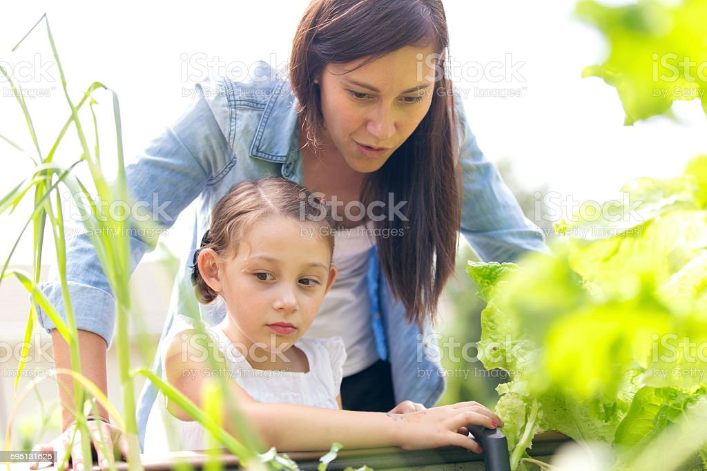 Mother and daughter enjoy gardening  and planting together outdoors stock photo
