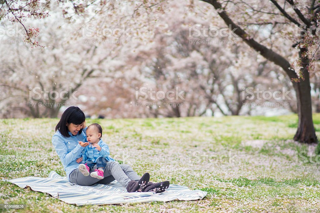 Mother and daughter enjoying the cherry blossoms stock photo