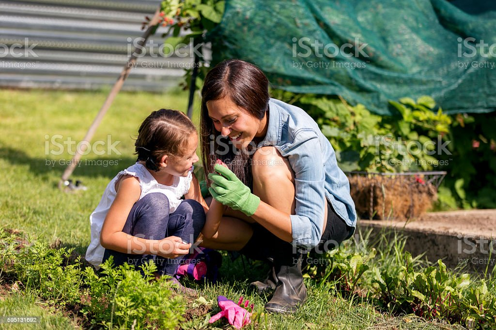 Mother and daughter gardening and planting together outdoors stock photo