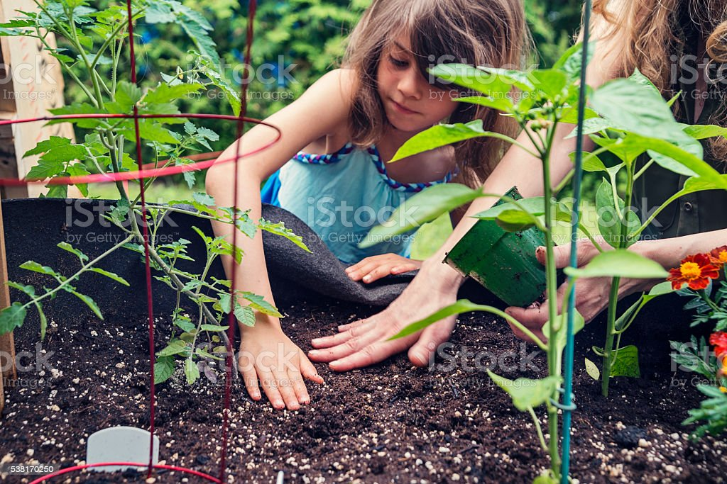 Mother and daughter gardening in a small space outdoors. stock photo