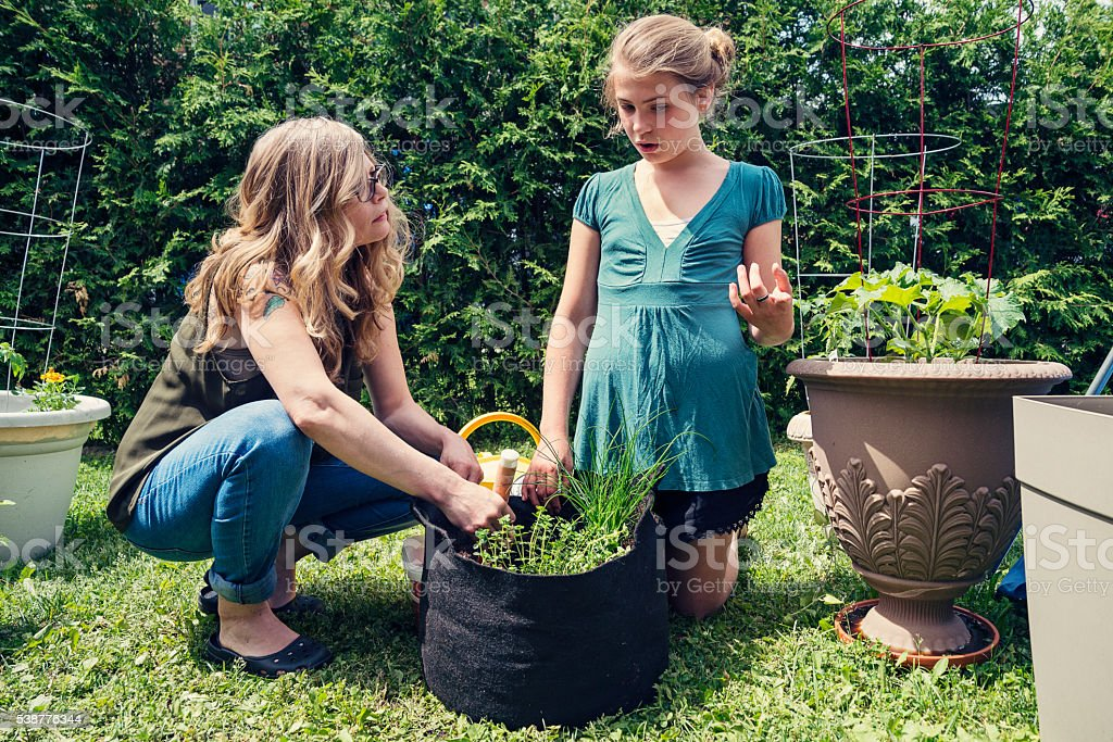 Mother and daughter gardening in backyard outdoors. stock photo