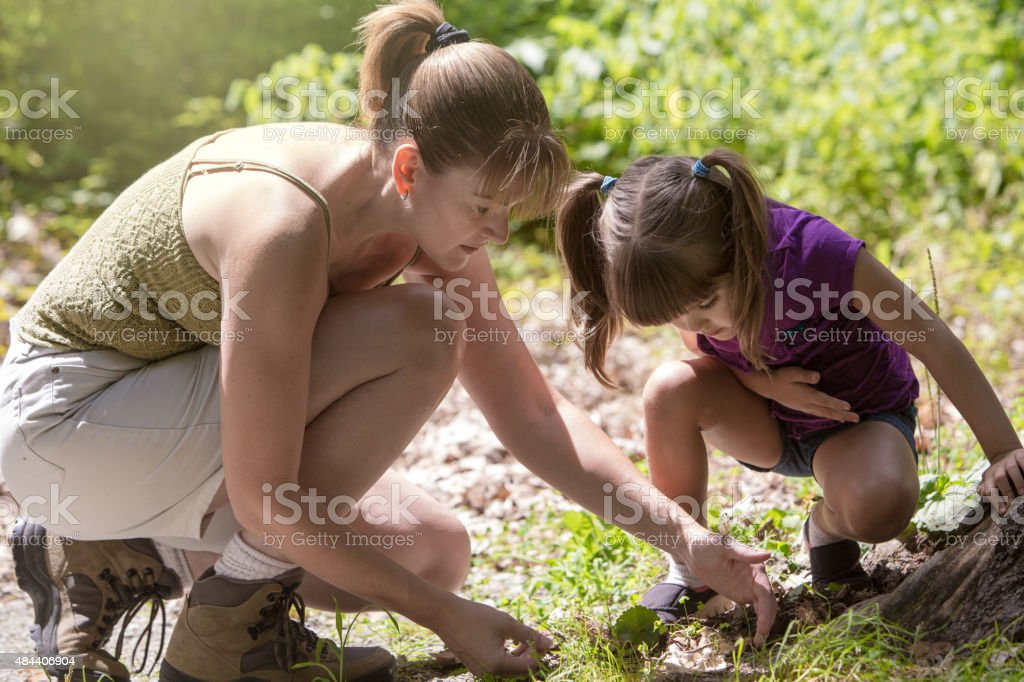 Mother and Daughter Learning about Insects stock photo