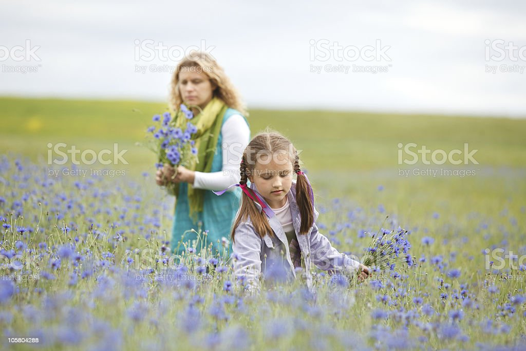 Mother and daughter picking flowers royalty-free stock photo