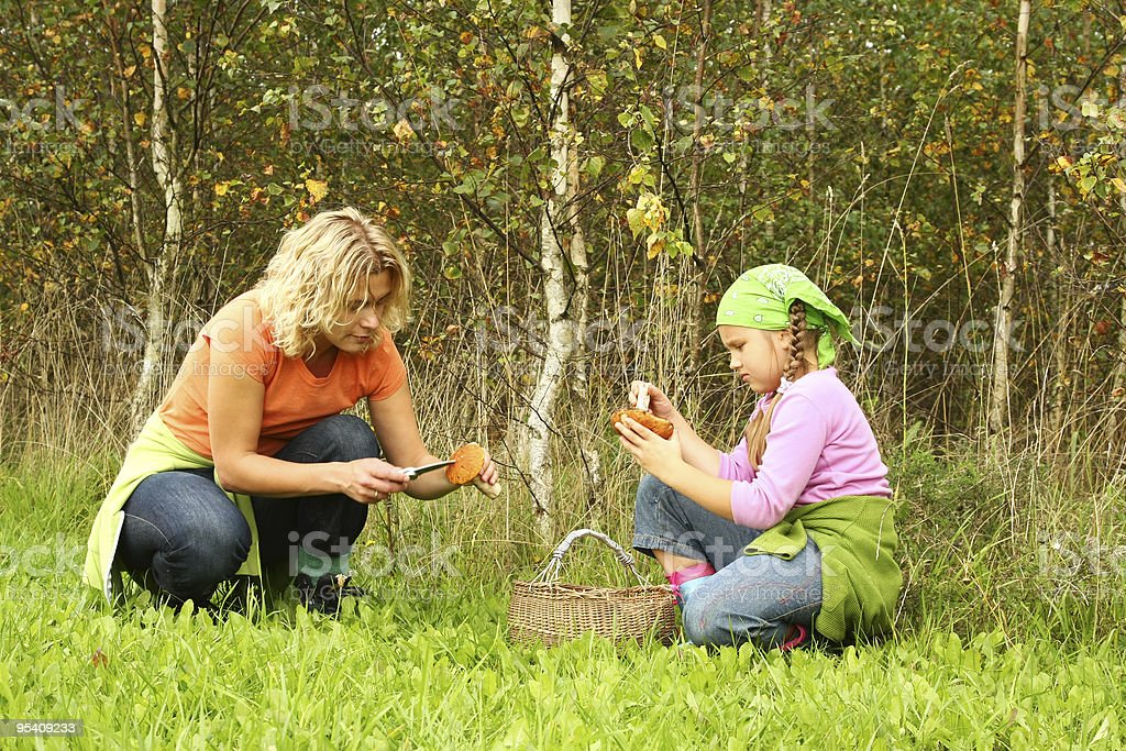 Mother and daughter picking mushrooms stock photo