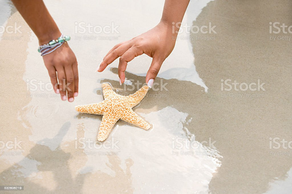 Mother and daughter picking up starfish stock photo