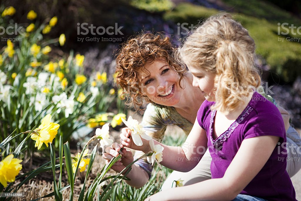 A mother and daughter planting Daffodils royalty-free stock photo