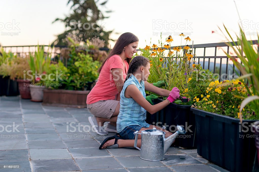 Mother and daughter preparing to plant in garden beds stock photo