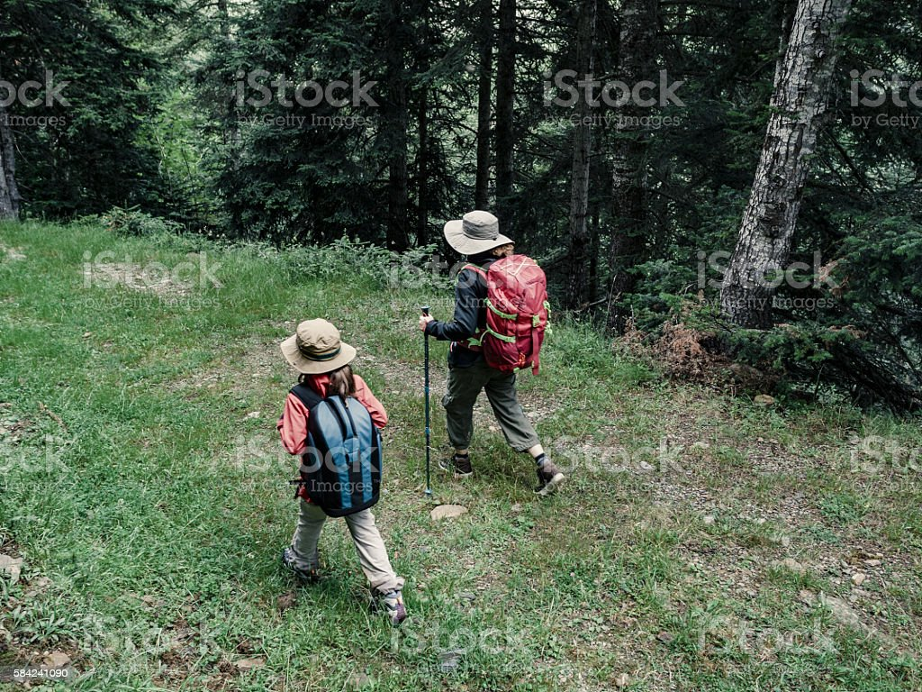 Mother and daughter trekking in the forest stock photo