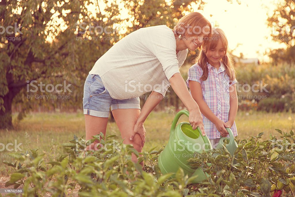 Mother and daughter watering plants royalty-free stock photo