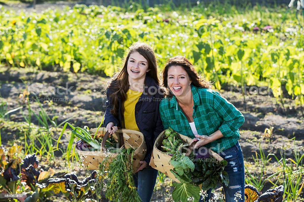 Mother and daughter working on family farm stock photo
