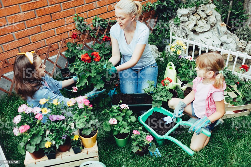 Mother And Daughters Planting Flowers Together. stock photo