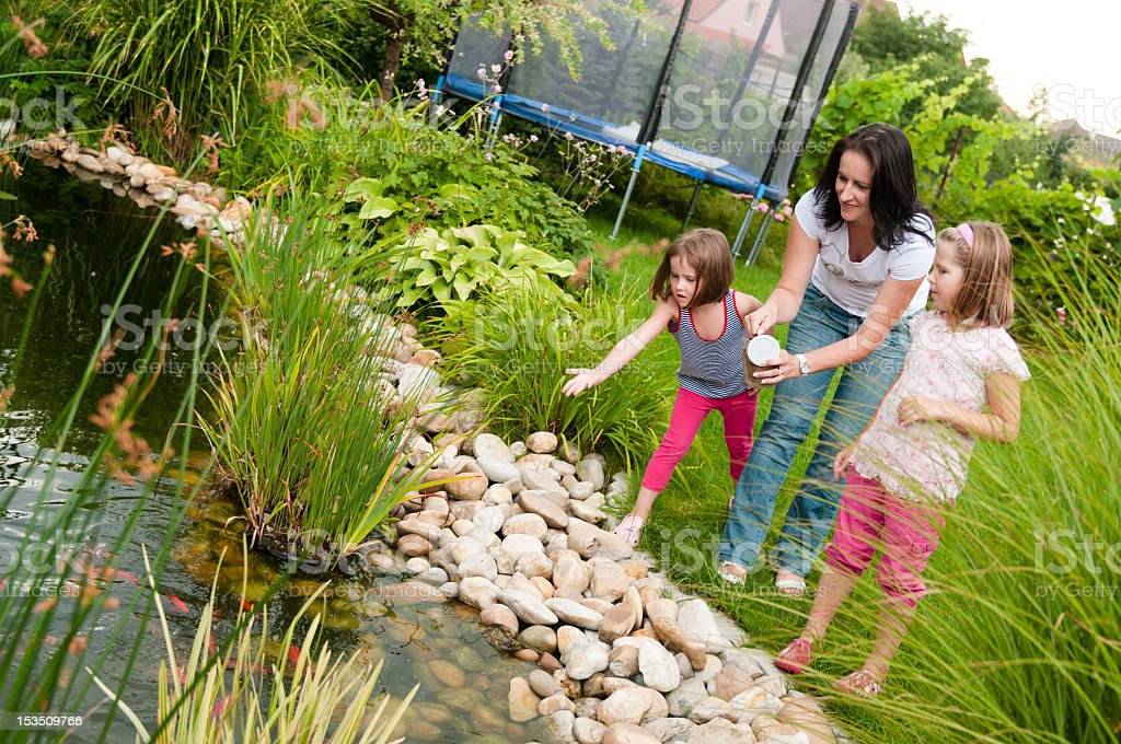 Mother and daughters tossing food into a pond to feed fish stock photo