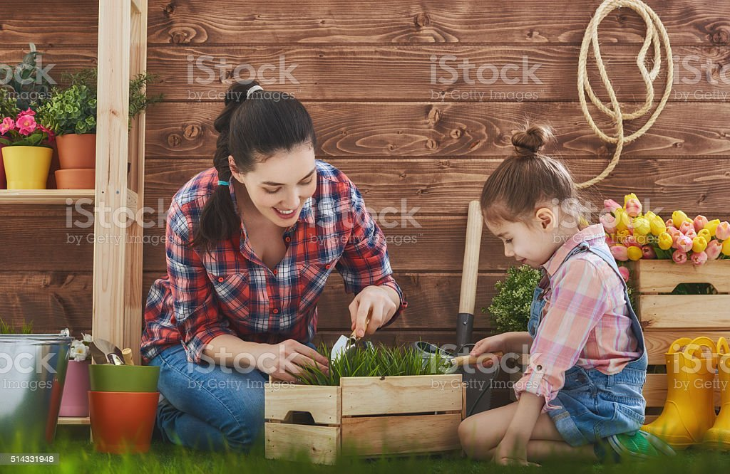 Mother and her daughter engaged in gardening stock photo