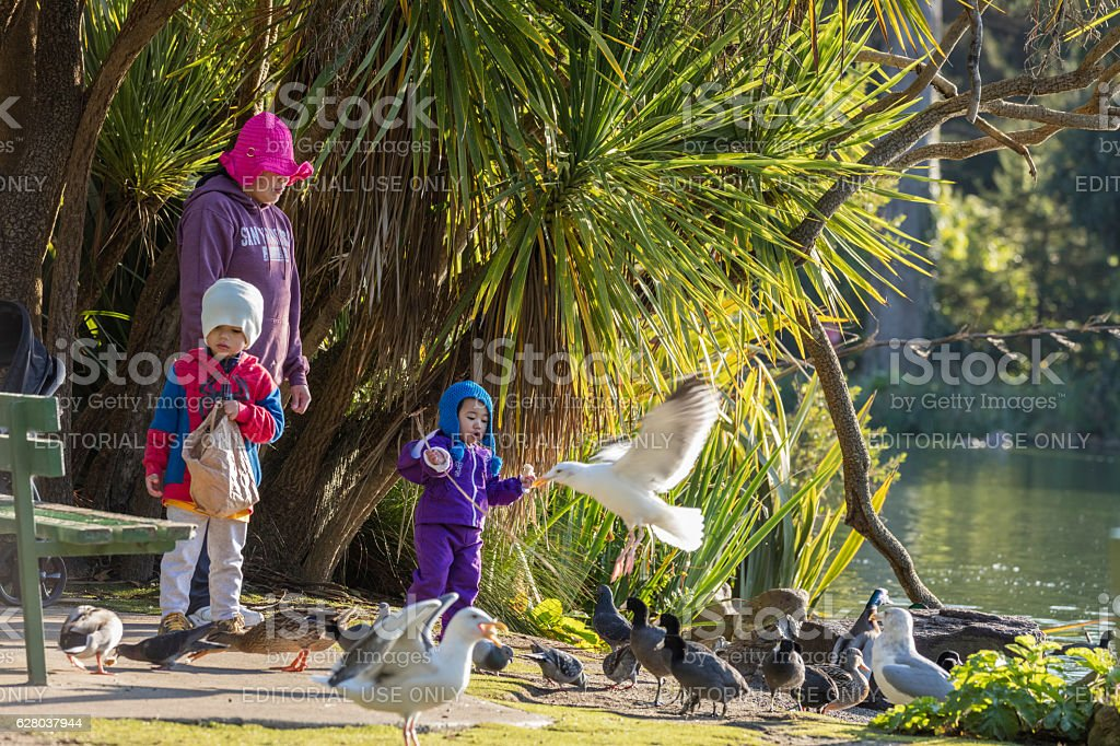 Mother and kids at Stow Lake of Golden Gate Park stock photo