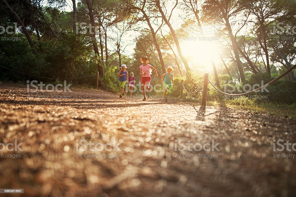 Mother and kids hiking in pine forest in Majorca stock photo