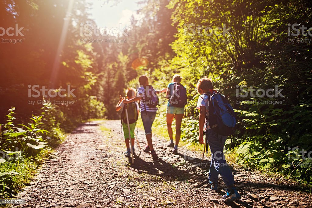 Mother and kids hiking in sunny forest stock photo