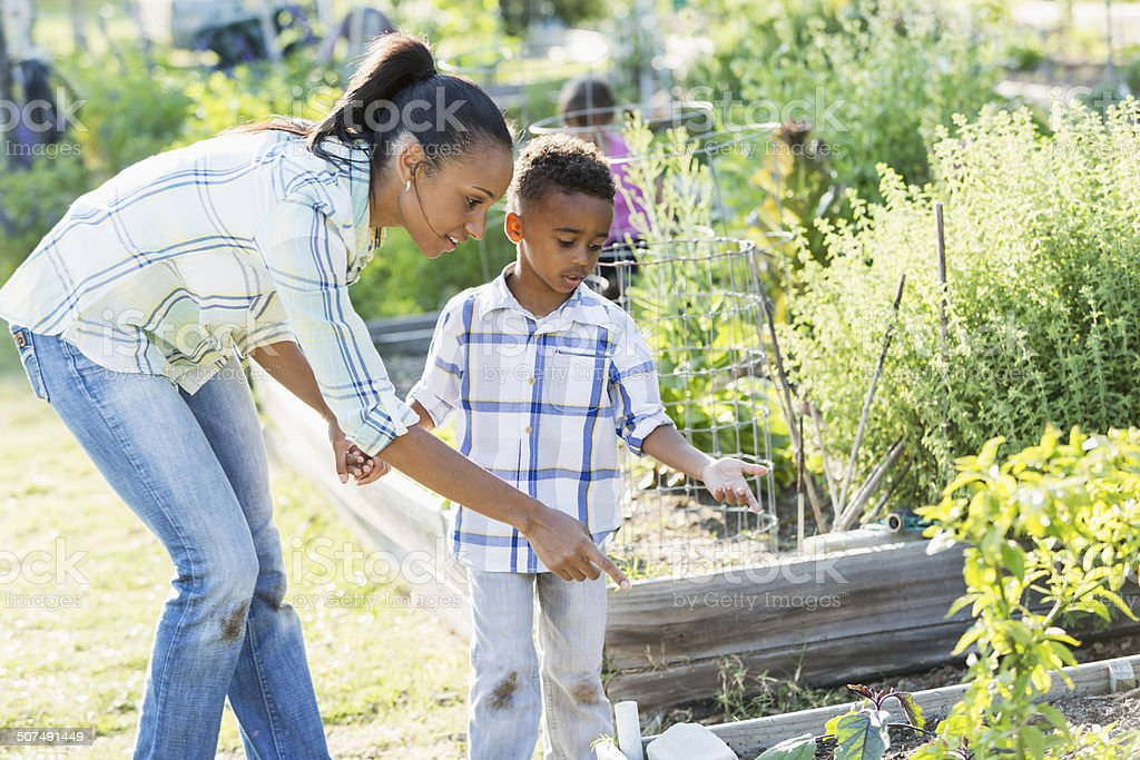 Mother and son at community garden stock photo