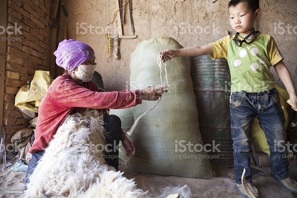 Mother and son doing sheep shearing in home stock photo
