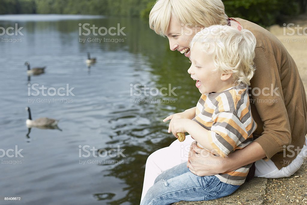 Mother and son feeding ducks in pond stock photo