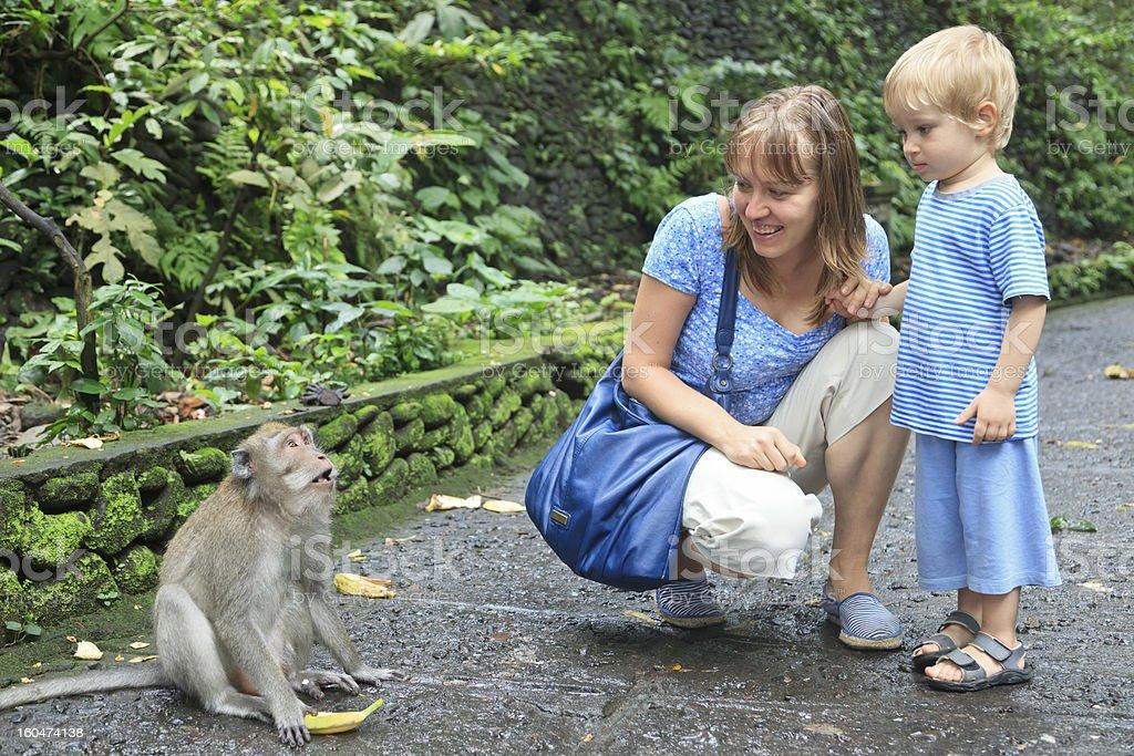 mother and son feeding wild monkey stock photo