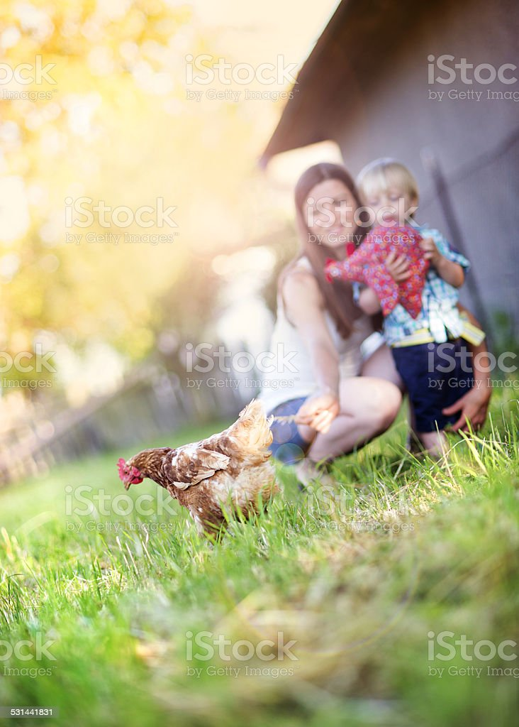 Mother and son on the farm stock photo