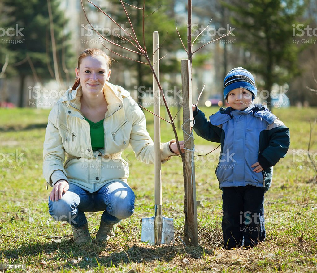 Mother and son planting a tree in a grass field stock photo