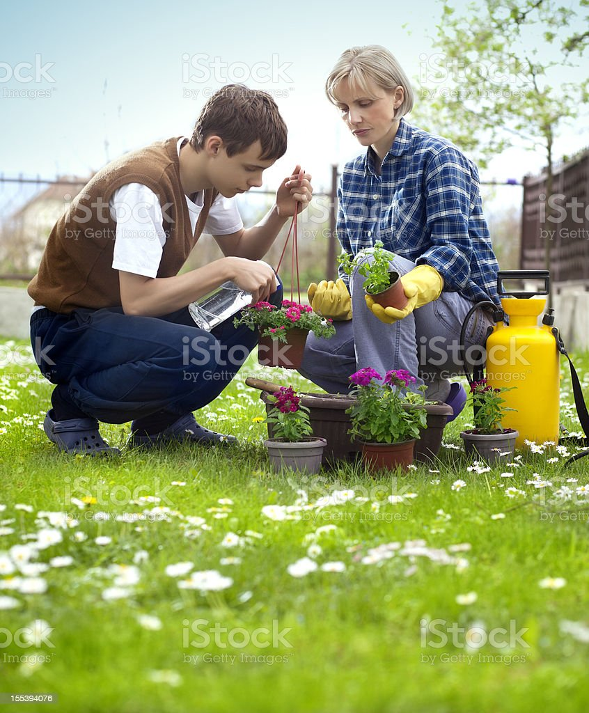 Mother and son planting flowers royalty-free stock photo