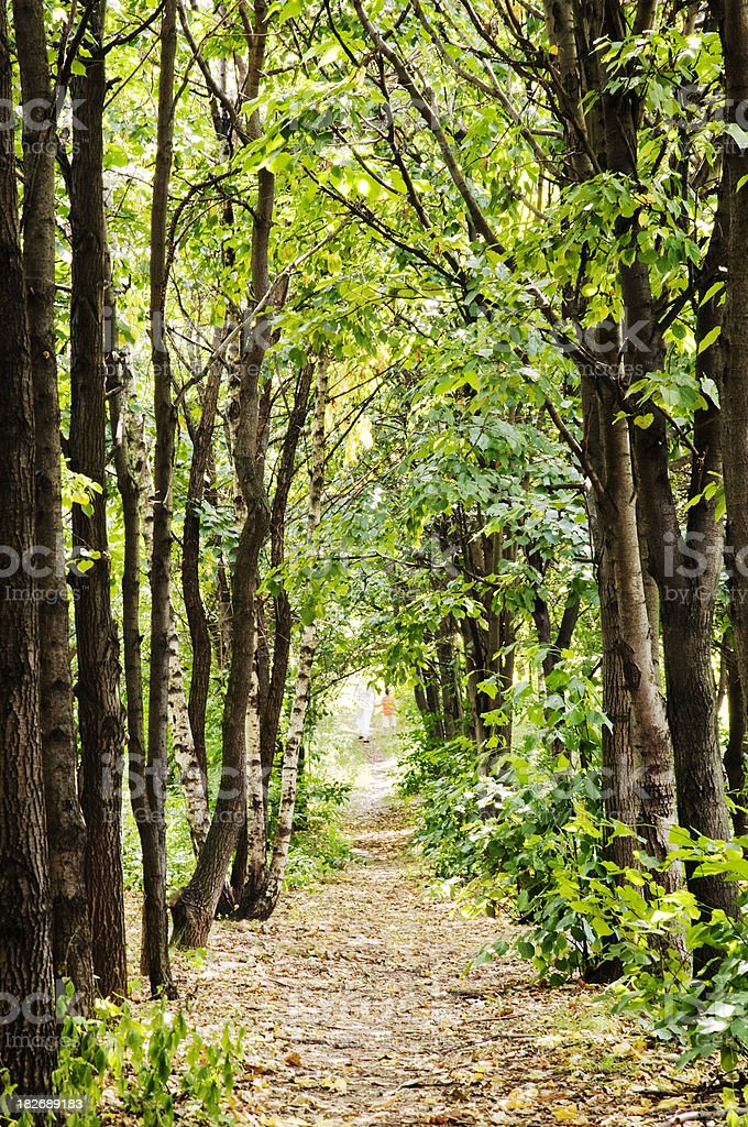 Mother and son walking in forest stock photo