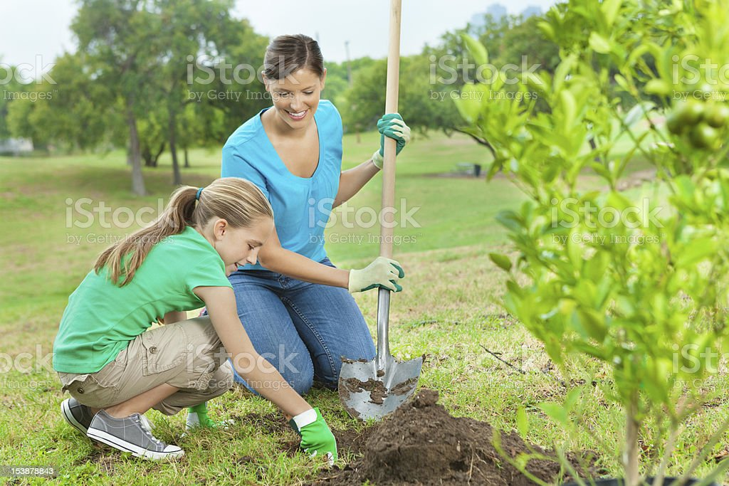 mother and young girl planting tree stock photo