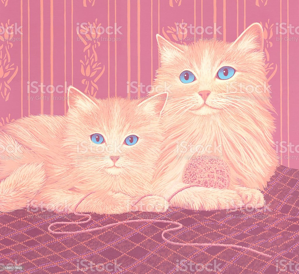 Mother Cat & Kitten royalty-free stock photo