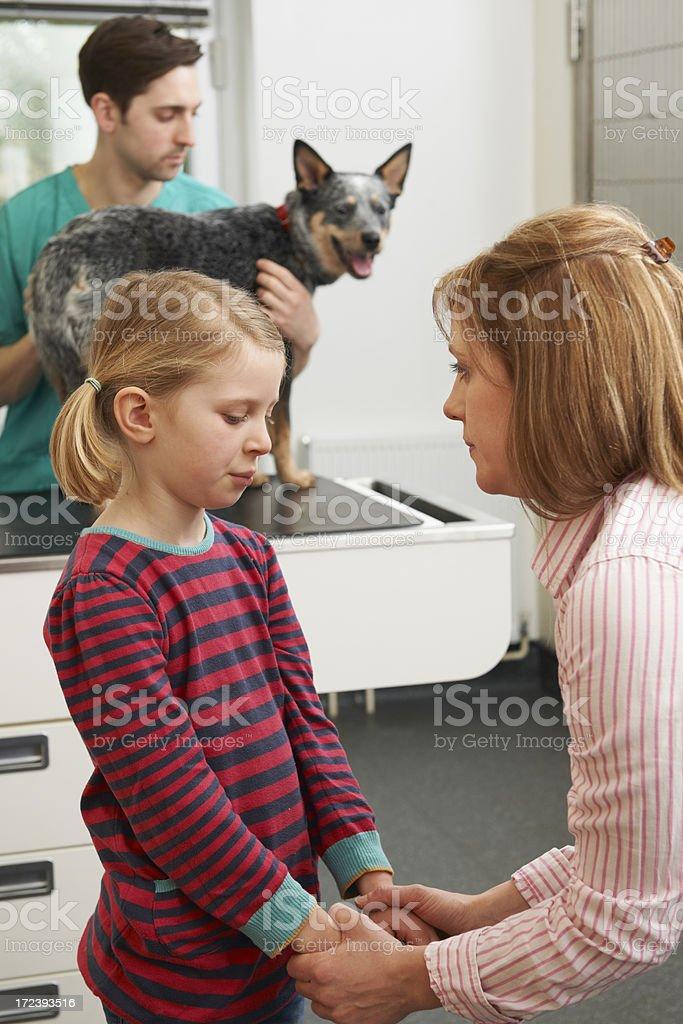 Mother Comforting Girl As Vet Treats Sick Dog stock photo