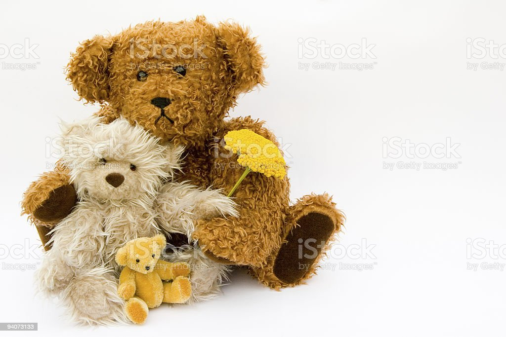 Mother, Father and Child Teddy Bear with flowers royalty-free stock photo