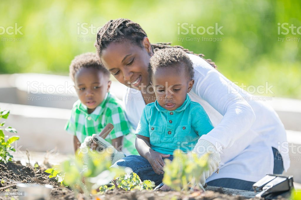 Mother Gardening with Her Kids stock photo