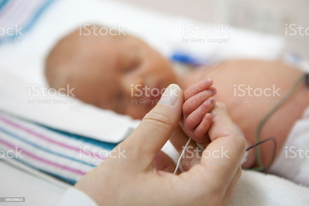 mother holdind hand of a premature baby in incubator stock photo