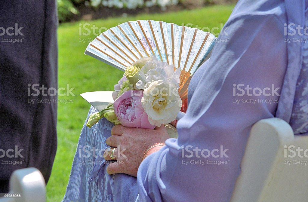 Mother of the Groom royalty-free stock photo