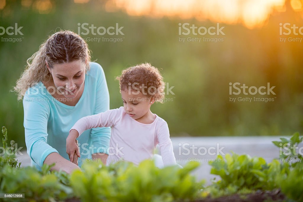 Mother Teaching Her Daughter How to Garden stock photo